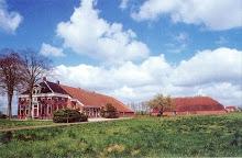01d Oostwold, Huningaweg, boerderij Toren (1999)