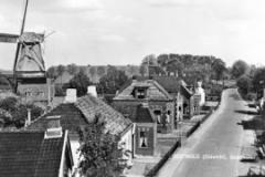 Goldhoorn 1925