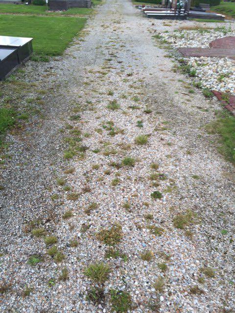 begraafplaats-huningaweg-oostwold-2